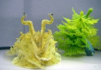Cuttlefish will change their shape as well as their color to blend in. . .