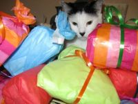 Moo & other gifts!