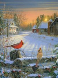 """Winter Afternoon""-Sam Timm"