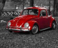 Red Old Beetle