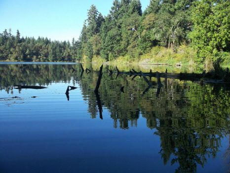 Quiet reflection: Sequalitchew Lake