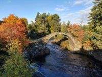 carrbridge autumn