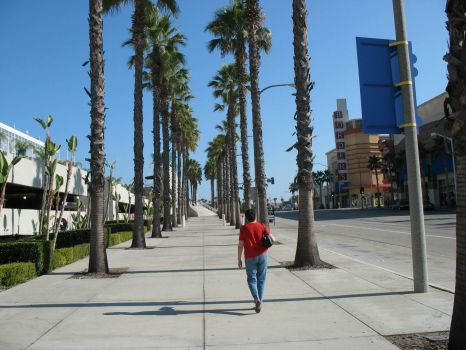 Long Beach, California 2008