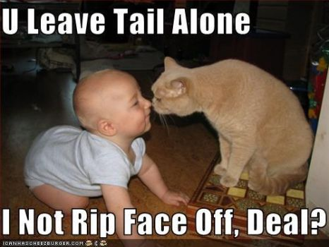 Cat Makes a Deal with a Baby