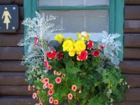 Rustic Window Box