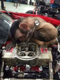 A monkey... with a wrench... get it?