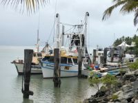 Fishing boats, Port Douglas