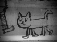 Cat Walk, Street Art, Barcelona, Spain