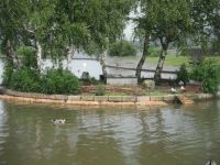 duck island at chasewater