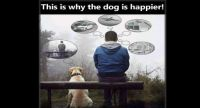 This-is-why-the-dog-is-happier1