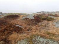 Spring drizzle in archipelago
