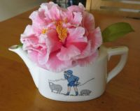 My frilly Camellia...