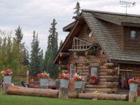 Alaskan Dogsled Training Camp