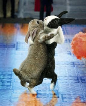 Ahh the Easter dance