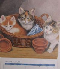 Kitty Calendar March 2021