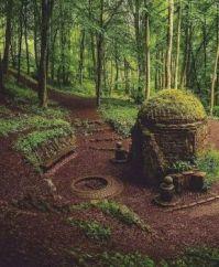 Dunnottar Woods, Scotland