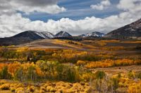 Fall-colors-of-Conway-Summit-a-mountain-pass-in-Mono-County-California