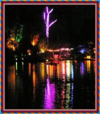Lights in the Park. New Plymouth.