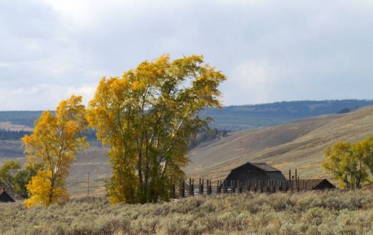 Lamar Valley ranger station-Yellowstone
