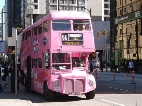 The wheels on the pink bus go round and round