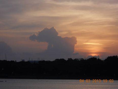 A baby elephant cloud
