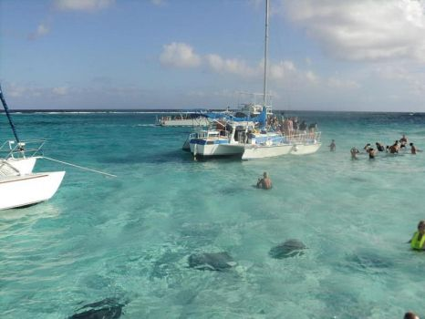Meeting Stingrays, Caymans