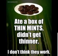 Ate a box of thin mints