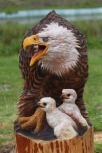 Mother Eagle and Babies     'Theme""