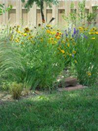 spring garden 013