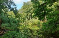 Wildlife Park Vosswinkel, Middle Germany