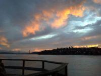 Tiburon Sunset