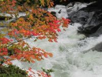 Deschutes River in autumn