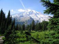 Paradise, Mt Rainier, Wa