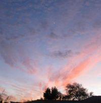 IMG_5898MohaveValley,AZ
