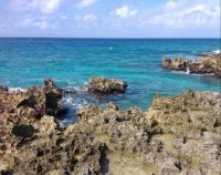 Grand Cayman Shoreline