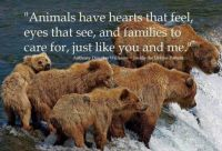 """1  ~  """"Animals have hearts that feel....."""""""