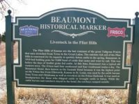 The Story Of Beaumont, Kansas