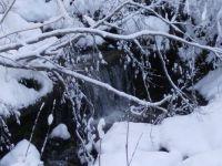 Zátiší zimy
