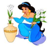 Jasmine 16