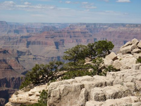 """THEME: """"National Parks""""  The Grand Canyon 2009 (I can post with more pieces, if you wish)"""