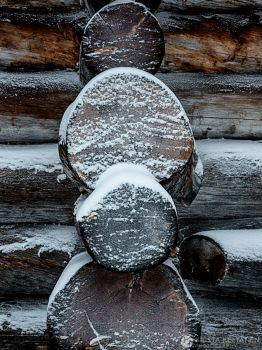 Logs and Snow