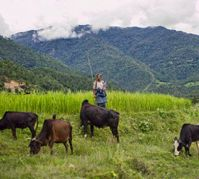 Farmers in Bhutan hope to be 100 percent organic in ten years.( Photo:*christopher* via flickr)