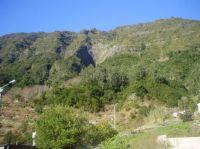 153-Madeira