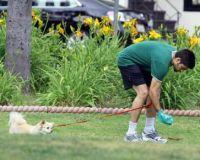 adrian - dog trainer