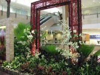The orchid corner at Terminal @ Changi Int'l Airport