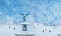 Today's Bing Image - A wonderland in winter