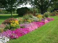 Flower-Bed-Idea