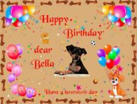 Happy Birthday dear Bella (Sharon72's dog)