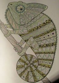 Reptile - coloring book