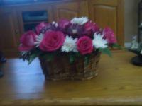 Bishka and my flowers